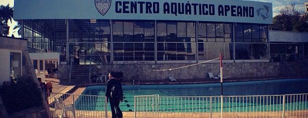 APEA - Associação Prudentina de Esportes Atléticos is one of Lugares favoritos de Ítalo.