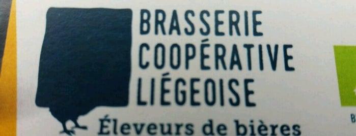 Brasserie Coopérative Liégeoise is one of Beer / Belgian Breweries (2/2).