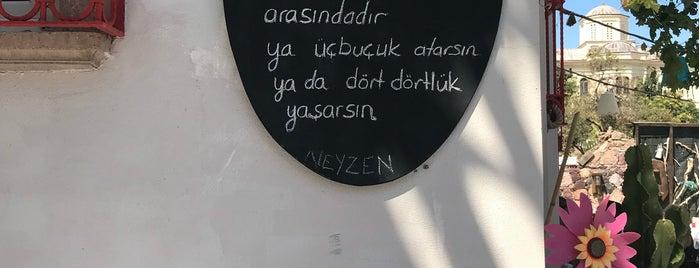 Zaıka Balık Restaurant is one of Sonradan Gurme.