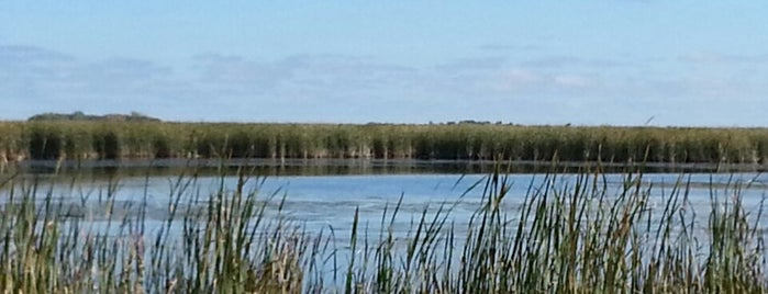 Agassiz National Wildlife Refuge is one of 82 Best Birdwatching Spots in the US.