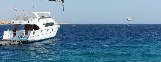 Naama Bay Jetty is one of Tempat yang Disukai ᴡ.