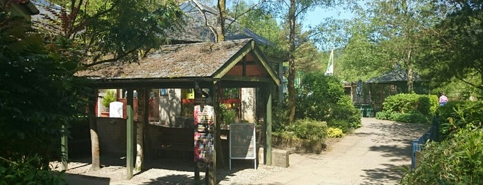 Corris Craft Centre is one of Attractions & Activities close by.