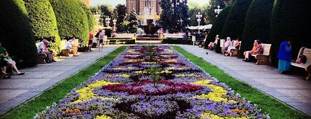 Piața Victoriei (Operei) is one of Lugares favoritos de Toma.