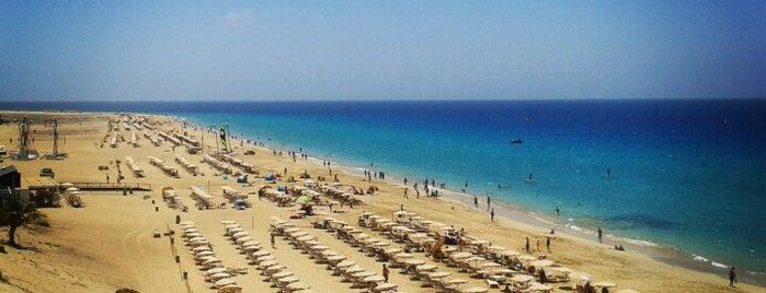 Playa Jandia is one of Tempat yang Disimpan Michael.