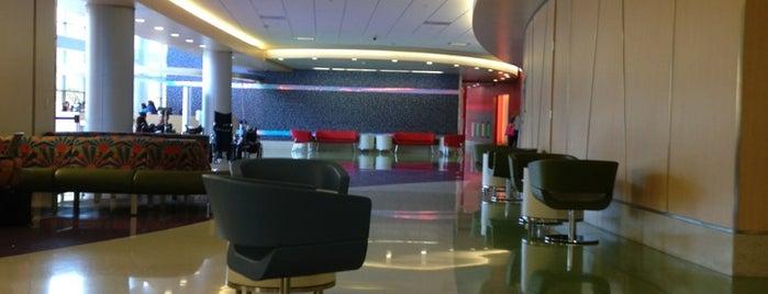 Phoenix Children's Hospital is one of Locais curtidos por Robert.