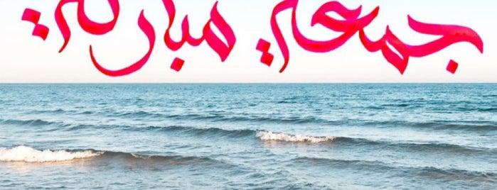 ŌKU-NIWA | Lounge & Florist is one of Jeddah obhur.