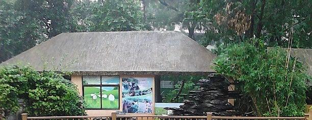 Guangzhou Zoo is one of جوانزو الصين للسائح العربي.