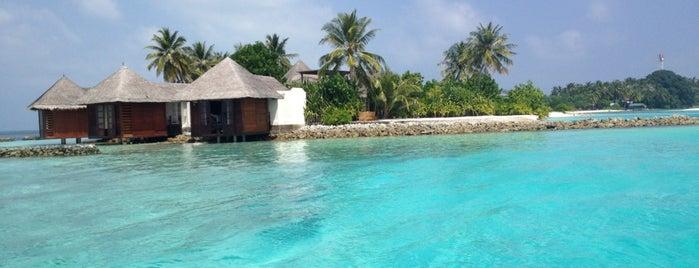 Main Jetty @ Four Seasons Kuda Hura is one of Maldives - The Sunny Side of Life.