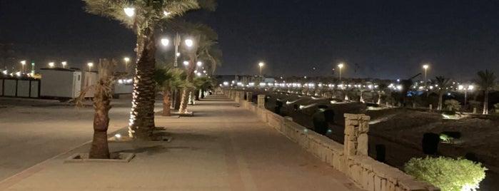 Alrehab walking area is one of Riyadh Walk.