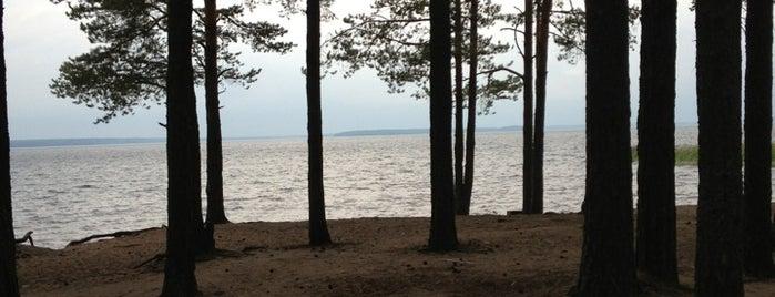 Озеро Глубокое is one of Posti che sono piaciuti a Mihail.