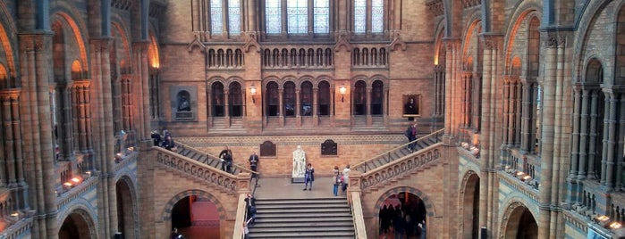 Natural History Museum is one of Let's go to London!.