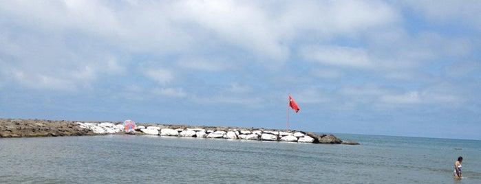 Yalıncak Plajı is one of Gürkan : понравившиеся места.