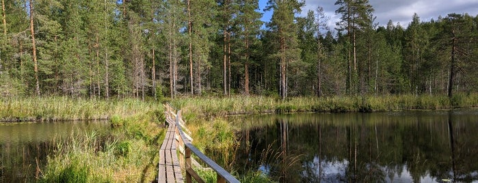 Kummakivi is one of My Saved Venues in Finland.