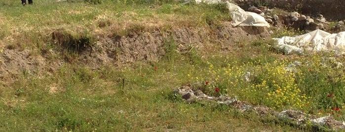 Yeşilova Höyüğü Neolitik Yerleşimi Müzesi is one of İzmir & Manisa.