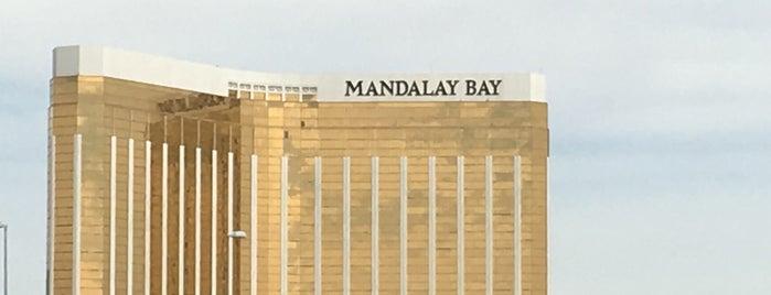 Mandalay Bay - South Seas E is one of barbee 님이 좋아한 장소.