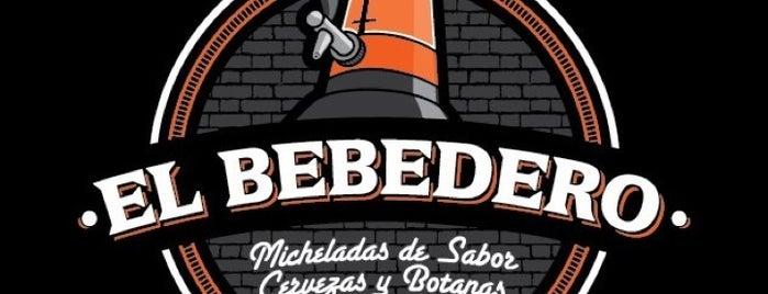 El Bebedero /Micheladas de Sabor is one of Lugares favoritos de Daniel.