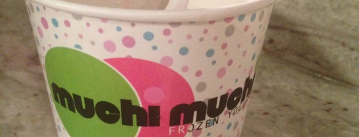 Muchi Muchi Yogurt is one of Ice cream.