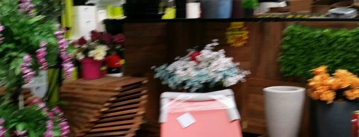 Shopping Do Acabamento is one of Tempat yang Disukai Thiago.