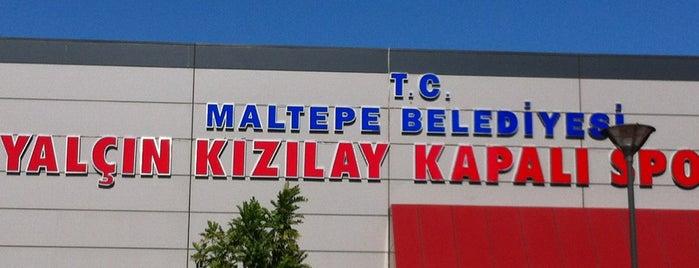 Maltepe Belediyesi Yalçın Kızılay Kapalı Spor Salonu is one of Doğu 님이 좋아한 장소.