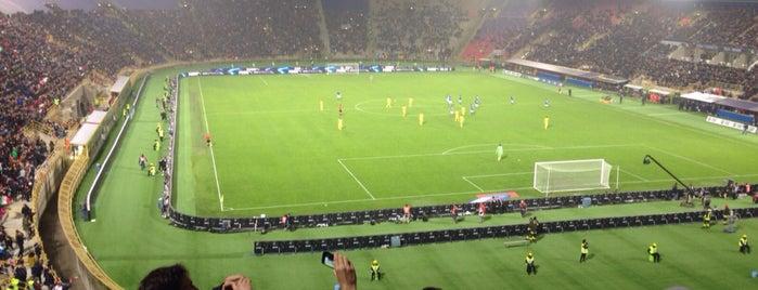 Stadio Renato Dall'Ara is one of Orte, die Mayara gefallen.