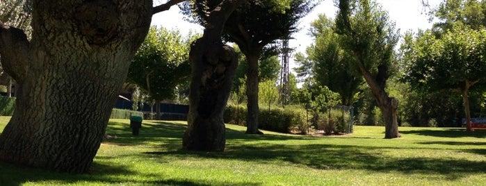 Club Deportivo El Tejar De Somontes is one of jordi : понравившиеся места.
