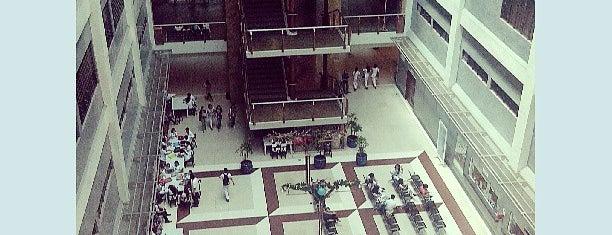 Cebu Doctors' University is one of Johanna Lois 님이 좋아한 장소.