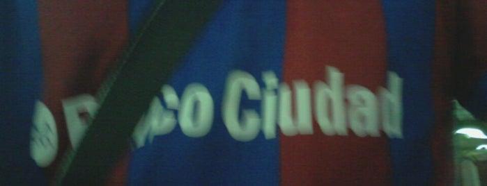 Open Gallo is one of Lugares favoritos de Hernan.