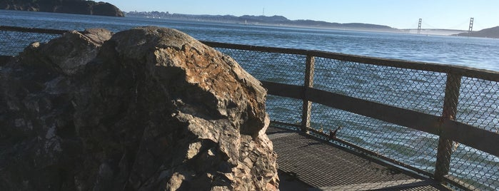 Elephant rock is one of Marin County's Best.