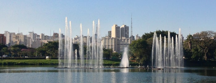 Parque Ibirapuera is one of Sampa 460 :).