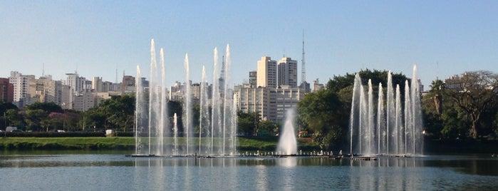 Parque Ibirapuera is one of Sampa 460 :).