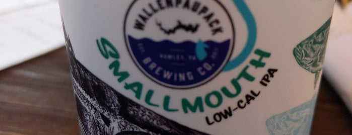 Wallenpaupack Brewing Company is one of Poconos.