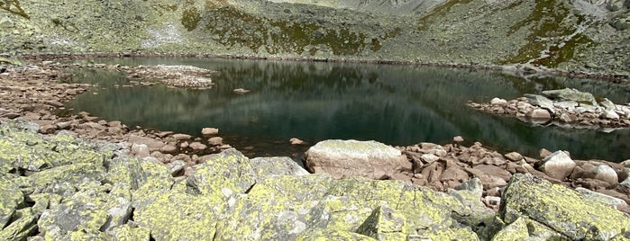 Capie Pleso (2.085 m) is one of Turistické body v TANAP-e.