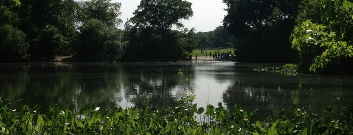 Prospect Park is one of NYC.