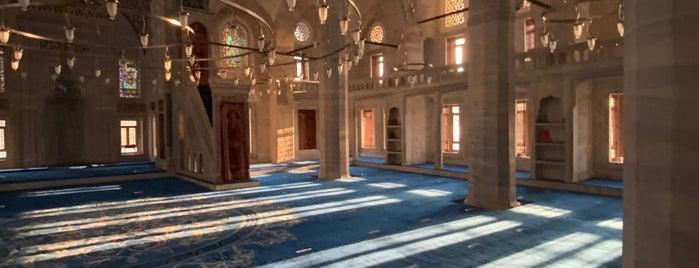 Sokullu Mehmet Paşa Camii is one of İstek listesi.