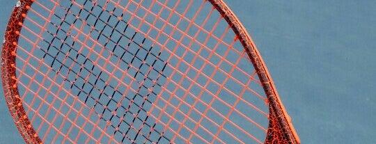 Tênis & Cia - Krav Maga Santo André is one of Posti che sono piaciuti a Estevão.