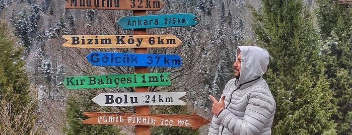 Abant Doğa Köşkü is one of Yapılanlar.