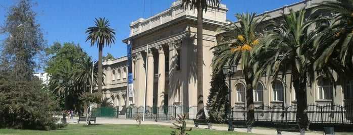 Museo Nacional de Historia Natural is one of Santiago.