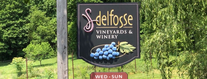 Delfosse Vineyards & Winery is one of Charlottesville Wineries.
