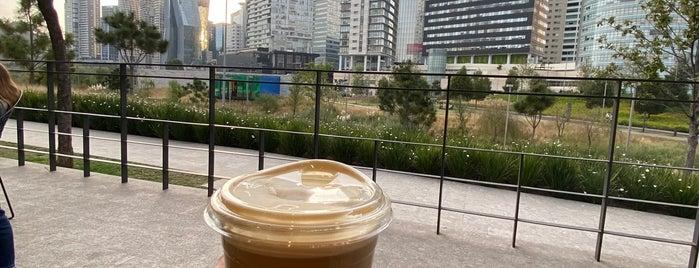 Starbucks is one of สถานที่ที่ Edwulf ถูกใจ.