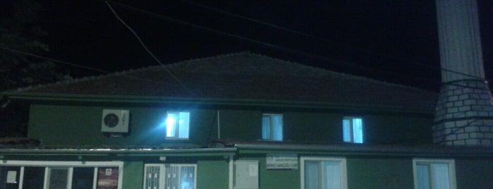 Merkez Saraçoğlu Camii is one of Konya Karatay Mescit ve Camileri.