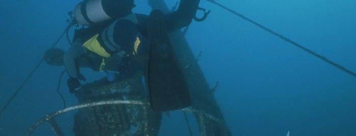 Dive Site Reggio-Messina (wreck dive) is one of Diving sites Costa Brava.