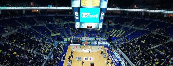 BASF Loca (Ülker Arena) is one of Lugares favoritos de veysel.