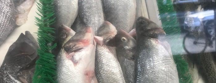 Anastasi Seafood is one of Fish🐠.