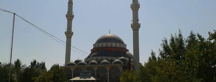 Aykent Ayakkabıcılar Camii is one of Konya Karatay Mescit ve Camileri.