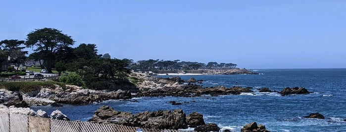 Monterey Bike Path is one of Locais curtidos por Alan.