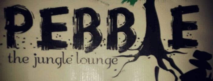 Pebble is one of Lugares guardados de Pooja.