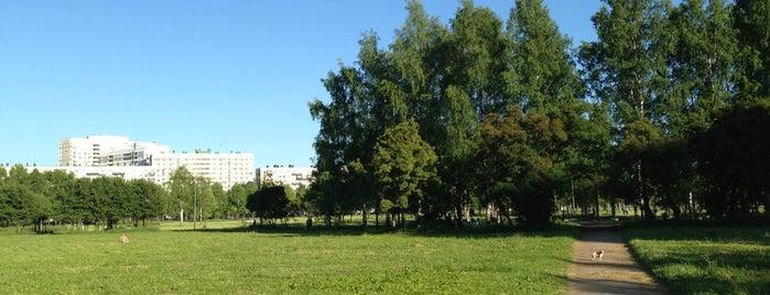 Парк им. Академика Сахарова is one of Tempat yang Disukai Andrew.