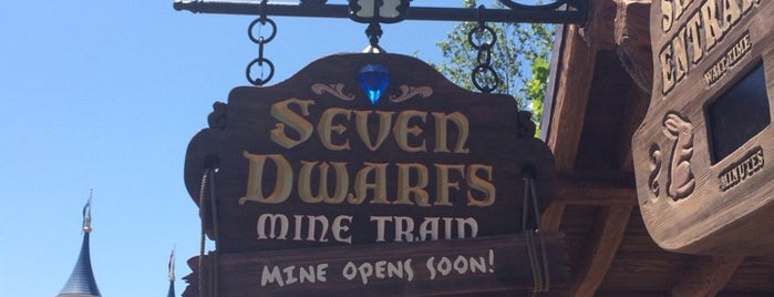 Seven Dwarfs Mine Train is one of Locais salvos de Priscila.