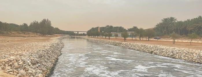 Riyadh Lakes Park is one of Outdoorsy sites in Riyadh.