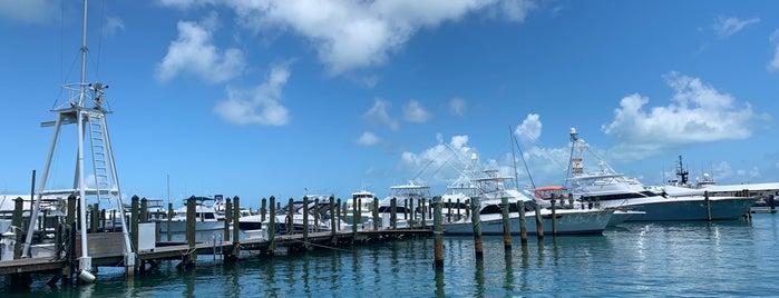 Historic Seaport is one of สถานที่ที่ Jan ถูกใจ.